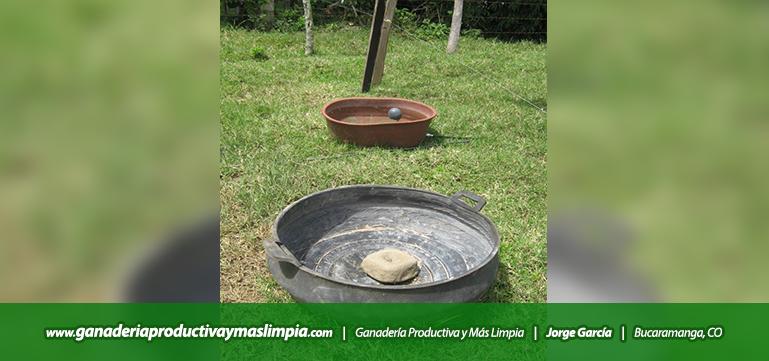 Ganadería Productiva y Más Limpia Jorge García Sales Mineralizadas
